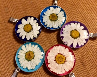 Real Daisy Necklace.  Natural flower preserved in resin. Your choice of color!  Great Sweet gift for your girl, hippie, boho, nature lover