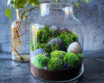 Terrarium with Garden Scene in Large Jar