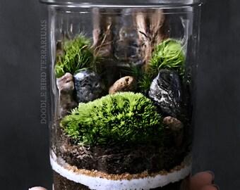 Miniature Landscape Terrarium Scene in Decorative Glass Jar
