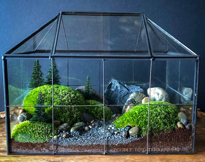 Geometric Glass House Terrarium with Mossy Woodland Garden