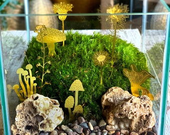 SALE Spring Garden Moss Terrarium with Gold Wildflowers and Mushrooms