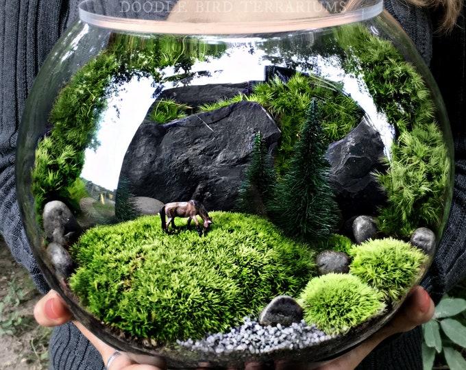 Pasture Terrarium with Horse Figurine- 3 Sizes