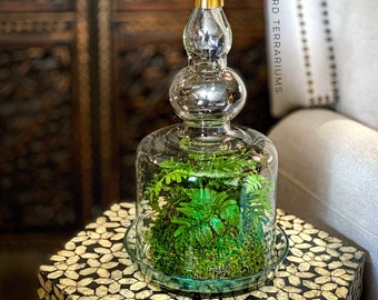 Bohemian Moroccan Glass Plant Terrarium with Brass Finial and Live Kokedama