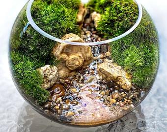 Rocky Creek Waterscape Terrarium with Live Native Plants - 3 Sizes
