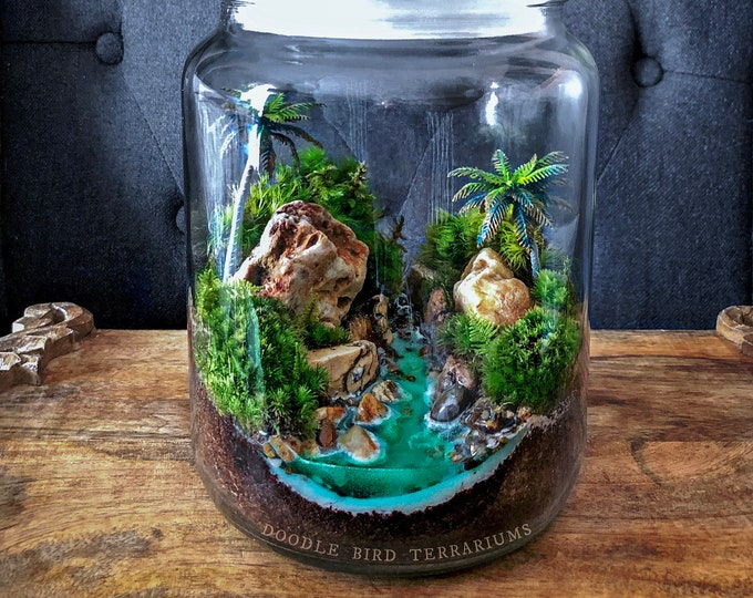 Hawaiian Dream Tropical Landscape Terrarium