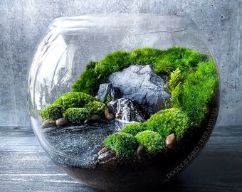 Lake Scene Terrarium for Peaceful Mindfulness - 3 Sizes