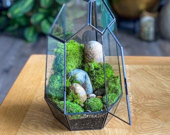 Prism Terrarium with Live Houseplants
