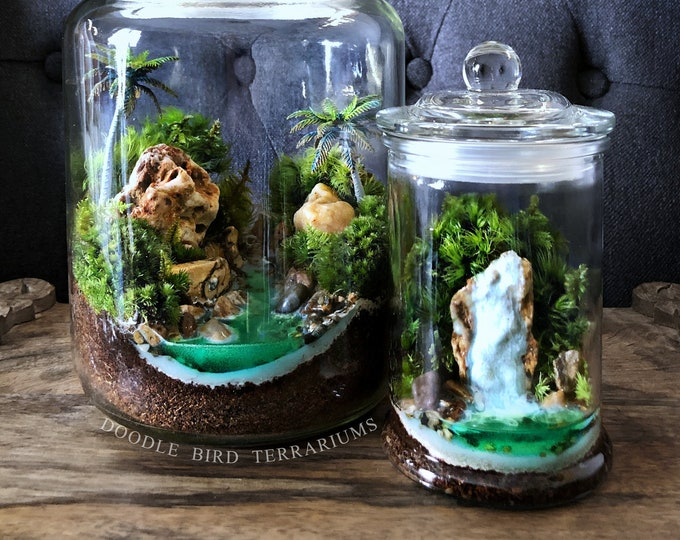 Miniature Live Moss Terrarium with Waterfall Scene