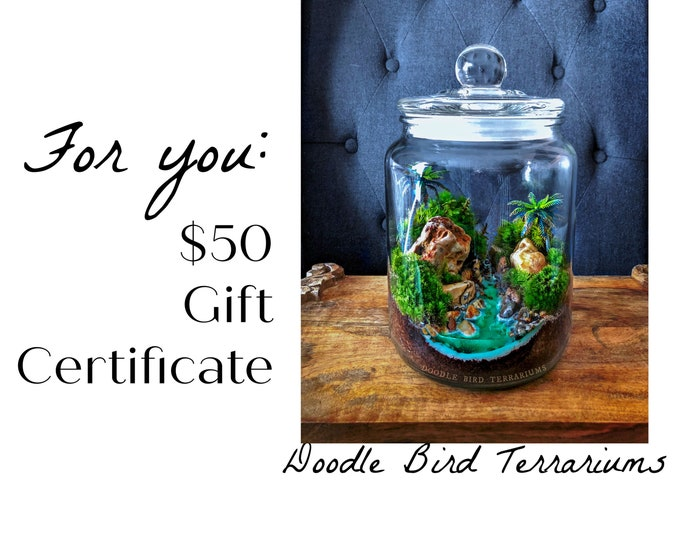 50 Dollar Gift Certificate to Doodle Bird Terrariums