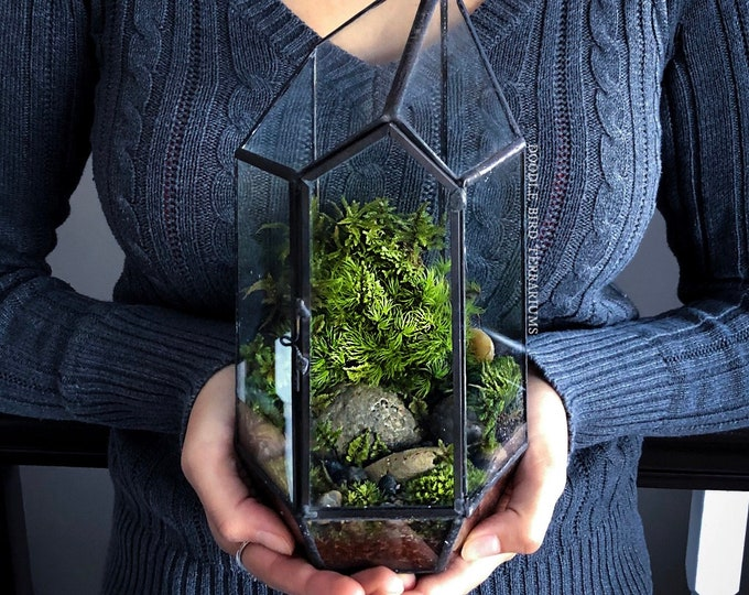 Prism Terrarium with Live Houseplants