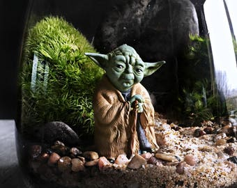 Star Wars Yoda Terrarium with Live Plants