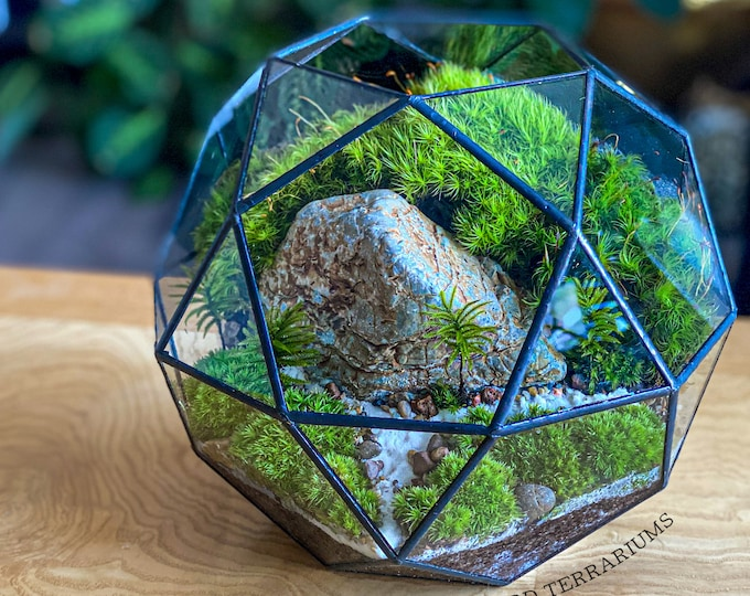 Geometric Moss Terrarium 32-sided Polygon FREE shipping