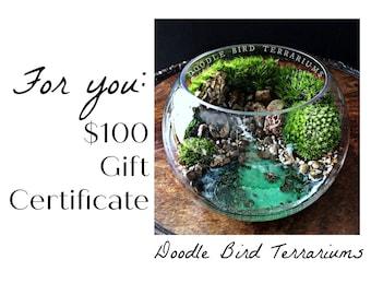 100 Dollar Gift Certificate to Doodle Bird Terrariums