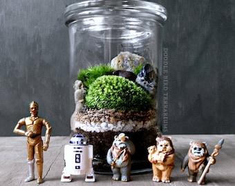 Star Wars Terrarium with R2D2 C3PO or Ewok Collectible Figurine