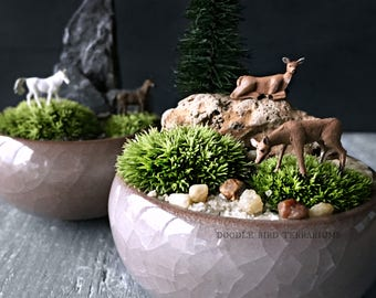 Miniature Japanese Kusamono Shitakusa Garden DIY Kit with Deer