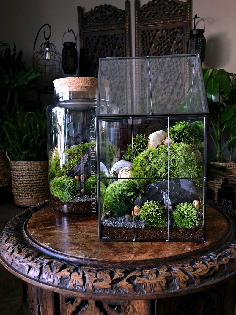 Large Greenhouse Moss Terrarium With Landscape Scene In Etsy