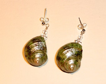 Under the Sea - Cute earrings featuring a natural shell painted in a beautiful turquoise metallic green enamel.