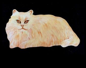 Little White Cat