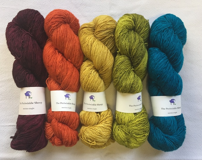 SALE merino single - set of 5 skeins - semisolids