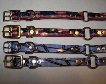 """3/4"""" wide Biothane Dog Collar with center ring"""