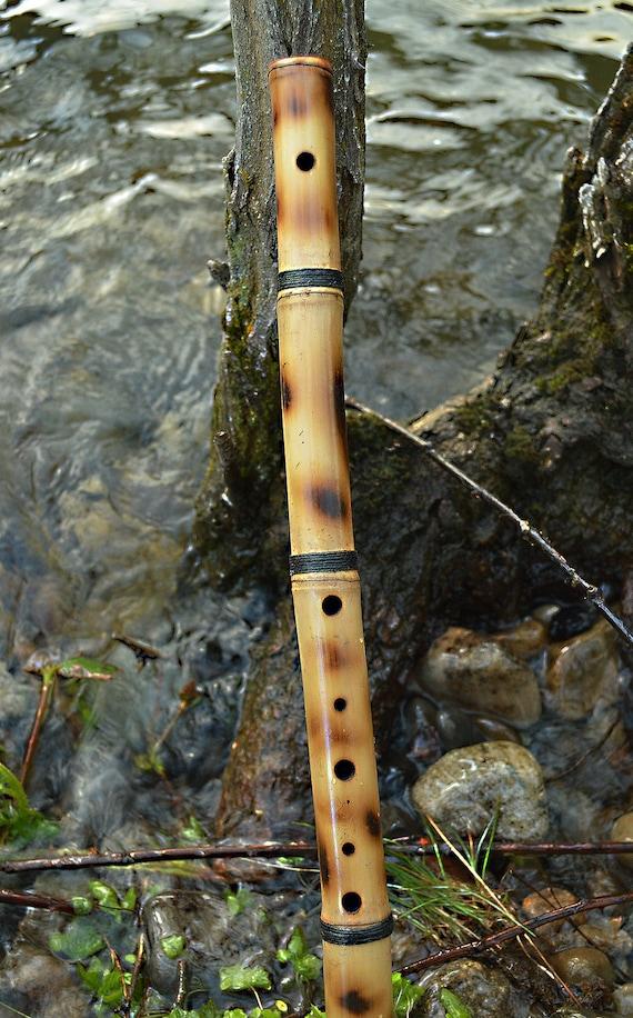 Arabian Scale Forest Flute