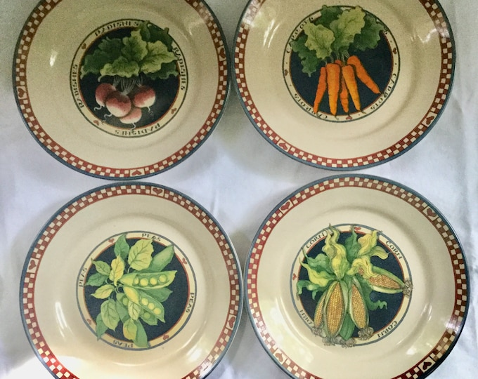 Susan Winget Salad Plate Set Dessert New In Box Salad Pasta Rimmed