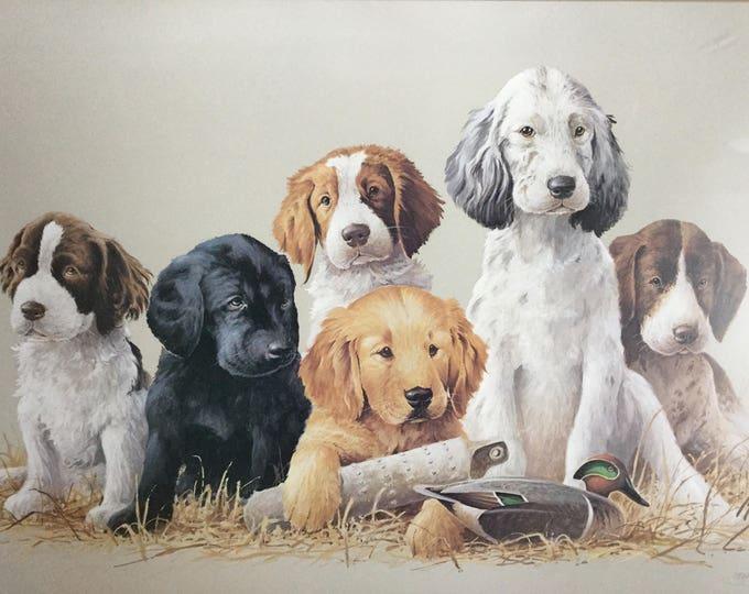 Puppy Dog Art James Killen School Daze Large Custom Frame Signed Puppy Lithograph Print