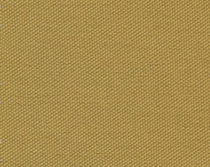 Organic Cotton Fabric Medium Weight HONEY COLOR Duck Canvas ideal for Slipcovers Upholstery Outerwear