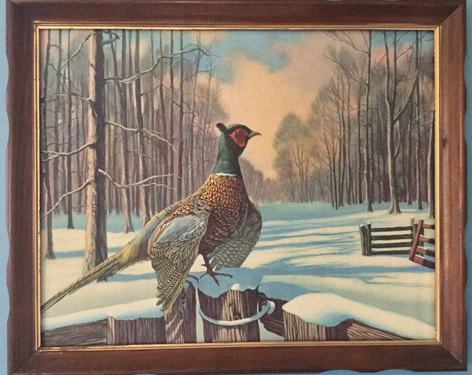 Vintage 1950s Mid Century Pheasant Perched On Dock Pile Wildlife Art Print Winter Snow Cabin Cottage Michigan Minnesota