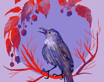 Catbird art, bird decor, Print 8x8