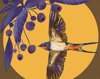 Barn Swallow, bird art, Print 8x8