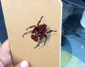 Pocket Book, Insect reference journal, Illustrated Moleskine pocket journal, Insects study, Book of insects, Nature Journal, Insect notebook