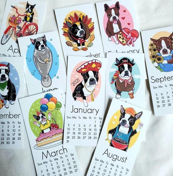 Boston Terrier Calendar 2021 Photos