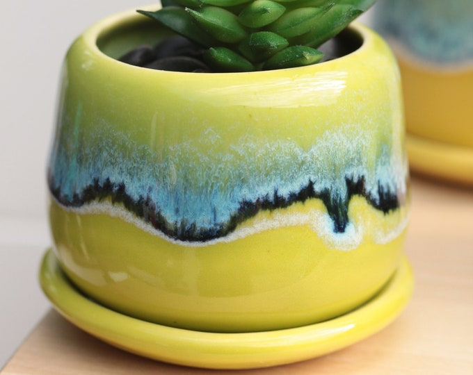 small lime planter // succulent container // boho decor // small planter