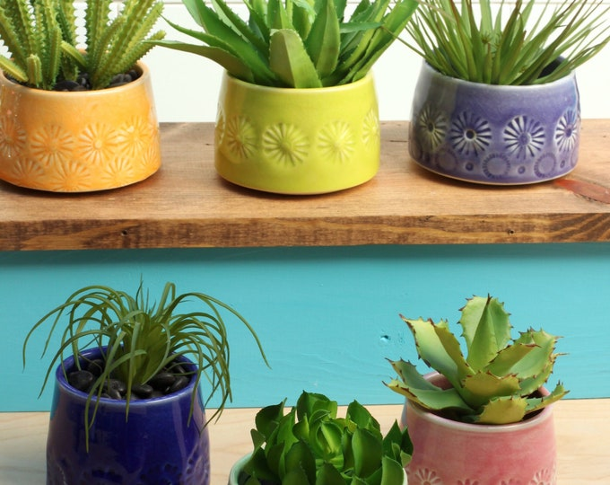 porcelain container choose your favorite // succulent container // cactus planter