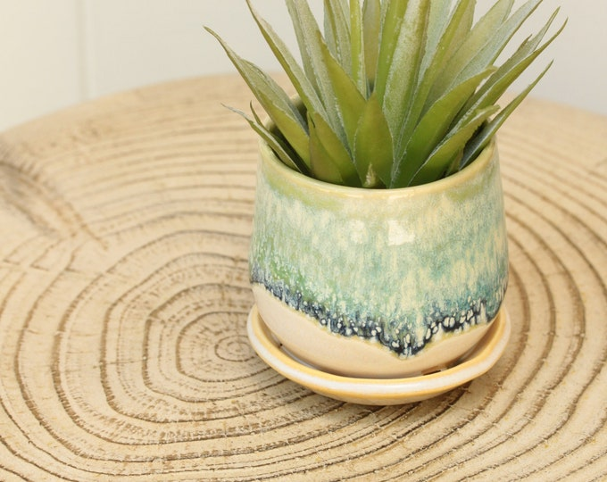 mini coastal planter // succulent container // boho decor // small planter