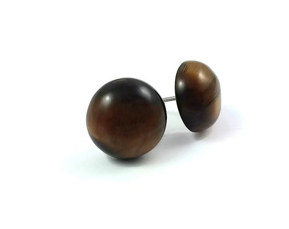 Tiger Eye stud earrings - Titanium and gemstone