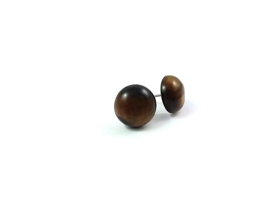Tiger Eye stud earrings - Titanium and gemstone