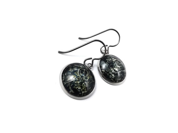 Steampunk #3 dangle earrings - Hypoallergenic pure titanium, stainless steel and glass jewelry