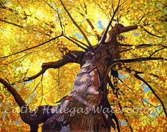 Autumn tree watercolor painting print by Cathy Hillegas, 12x16, watercolor print, gold, yellow, orange, blue, purple, brown, maple tree