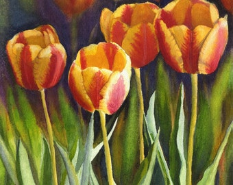 Yellow Red Tulips watercolor floral print from original painting by Cathy Hillegas