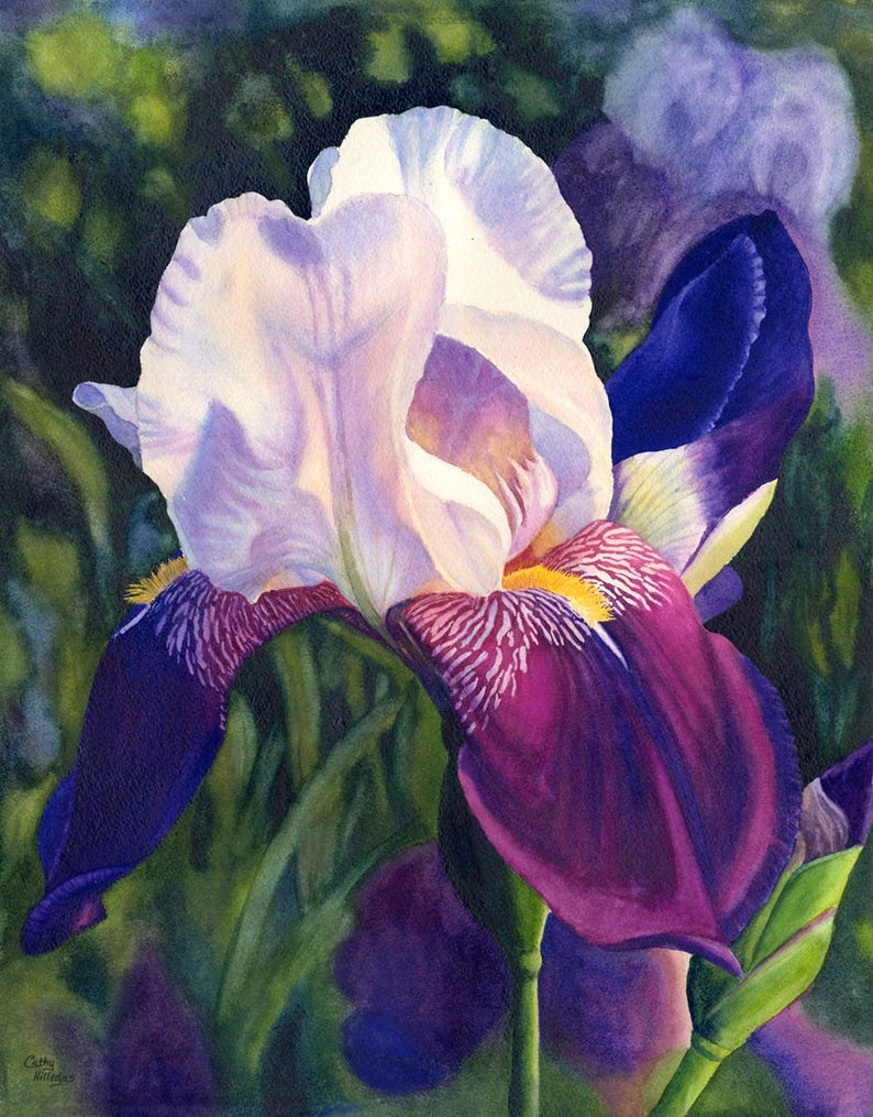 6af4c941e48 White Purple Iris Art Watercolor Painting Print by Cathy