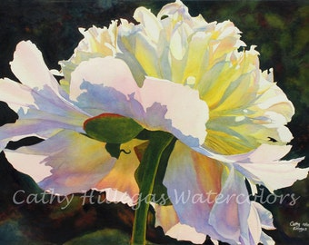 White Peony Art Watercolor Painting Print by Cathy Hillegas, floral watercolor, 12x16, watercolor print, gifts for mom, gifts under 50, pink