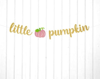 Little Pumpkin Banner, Fall Baby Shower, Baby's 1st Halloween, Choose Your Colors, Free Shipping