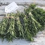 "RESERVED for LAURA 120 Rosemary Wedding favors/ Fresh organic Rosemary loose sprigs /fragrant 4 "" DIY Wedding Invitations /Wedding Settings"