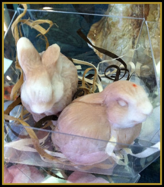 Bunny Rabbits Goats Milk Soap