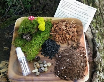 THE Kit - DIY Terrarium Kit - All you need is the Container