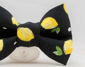 Dapper Cat Lemons Bow Tie