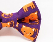 Dapper Cat Orange Cats on...