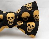 Dapper Cat Gold Skulls Bow Tie